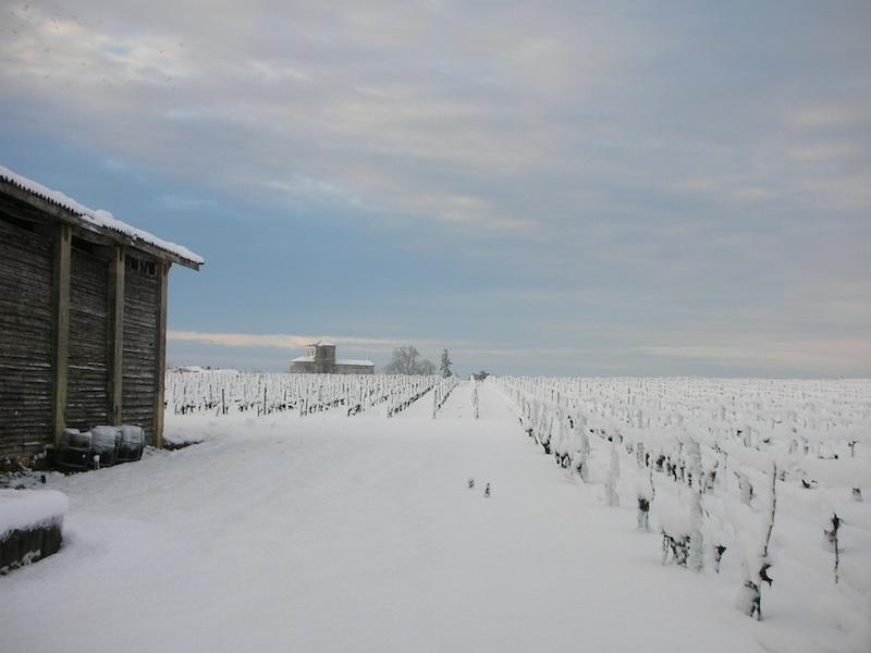 terroir-vine-snow-chateau-des-arras