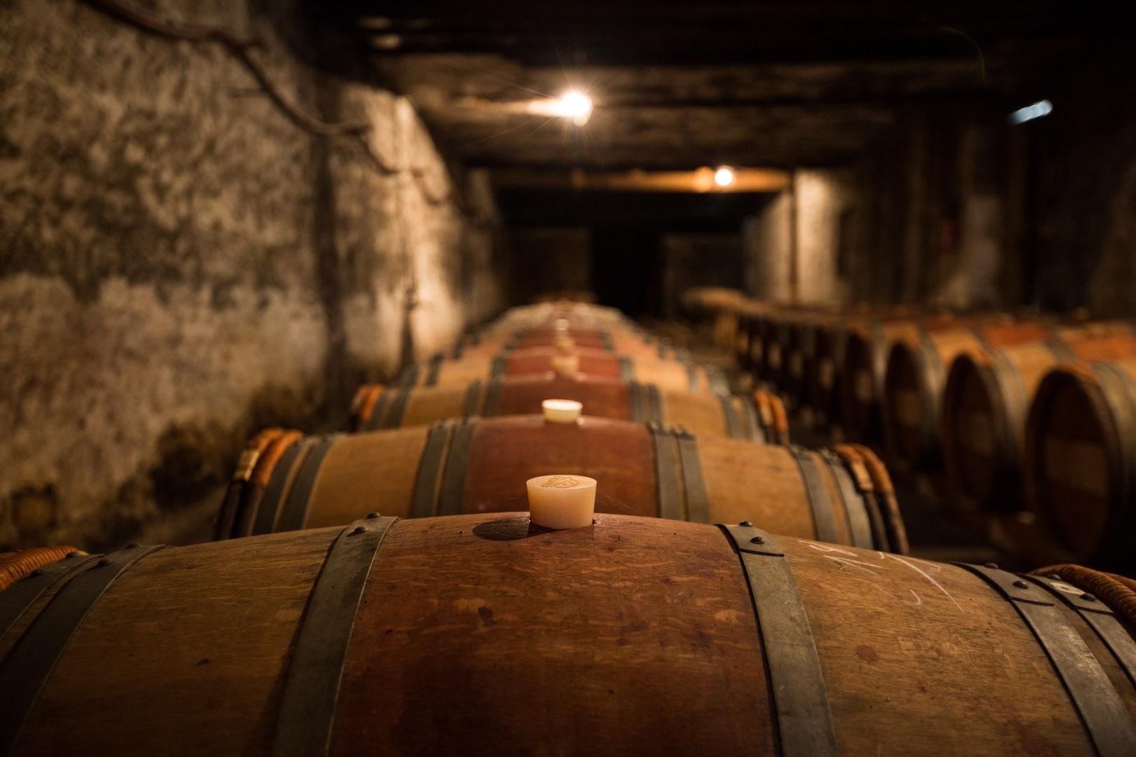 philosophy-chateau-des-arras-cellar-barrels